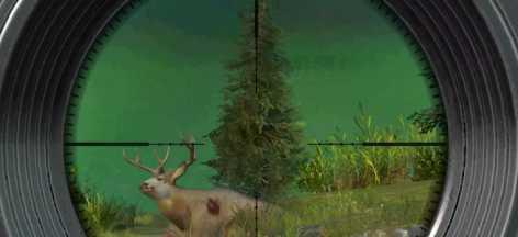 Hunting Clash: Охота на животных. взлом (Mod: много денег)